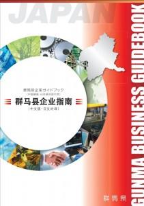 guidebook_cn